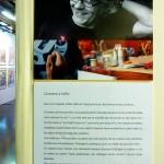 écrivain biographe correctrice Bordeaux